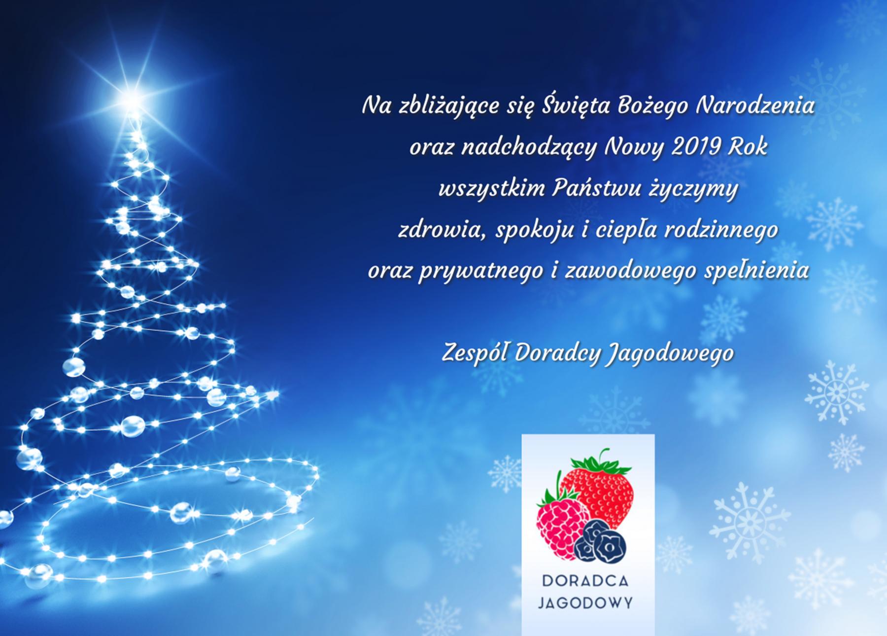 Wesołych Świąt oraz Szczęśliwego Nowego 2019 Roku