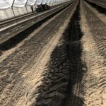 3. W projekcie badano również efektywność dodatku węgla brunatnego Carbohort-min