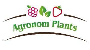 LOGO - agronom_PLANTS